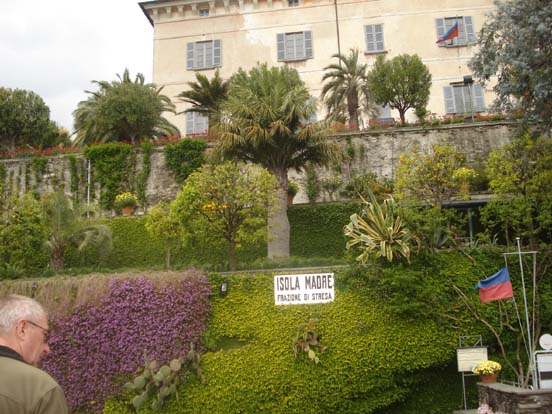 Jardin d 39 isola madre italie for Jardin d italie chateauroux