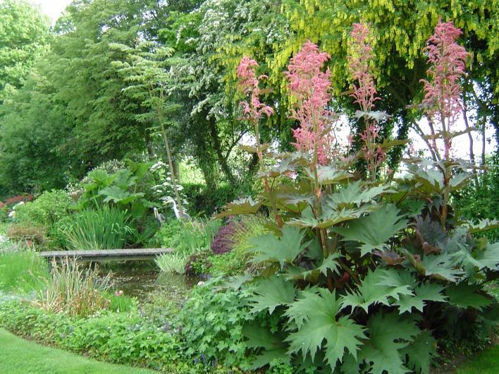 Design petit jardin en pente montreuil 19 petit montreuil - Petit jardin maternal la plata amiens ...