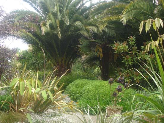 Visit jardin du pellinec - Jardin du pellinec ...